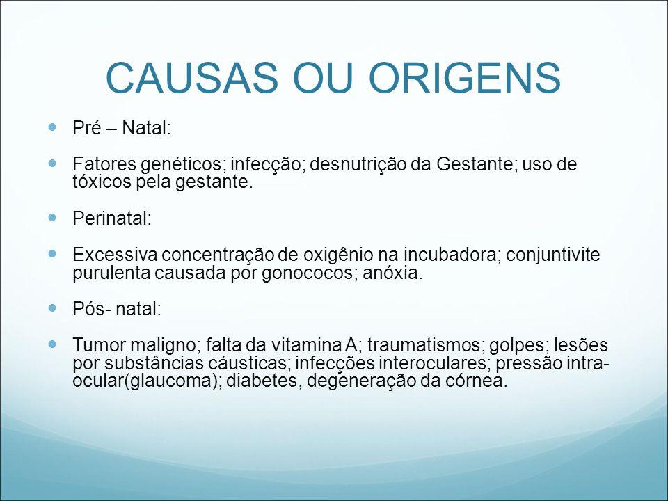 CAUSAS OU ORIGENS Pré – Natal: Fatores genéticos; infecção; desnutrição da Gestante; uso de tóxicos pela gestante. Perinatal: Excessiva concentração d