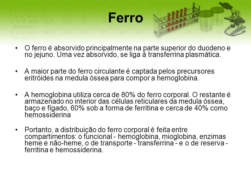 Ferro O ferro é absorvido principalmente na parte superior do duodeno e no jejuno. Uma vez absorvido, se liga à transferrina plasmática. A maior parte