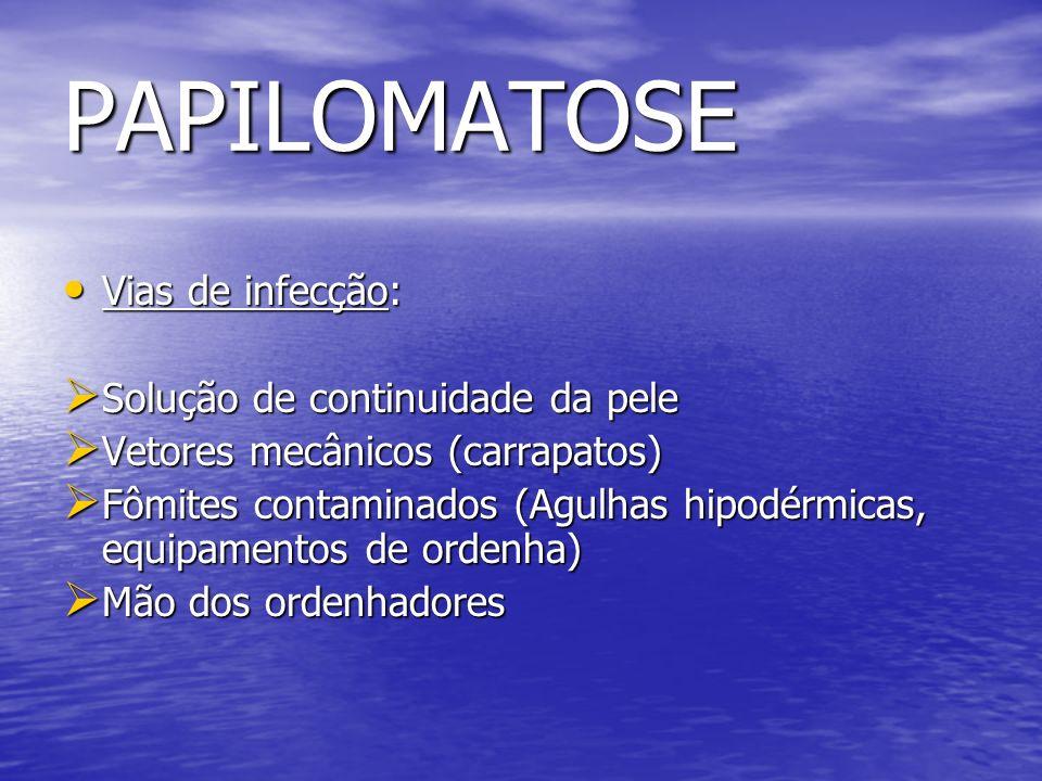 PAPILOMATOSE Vias de infecção: Vias de infecção: Solução de continuidade da pele Solução de continuidade da pele Vetores mecânicos (carrapatos) Vetore