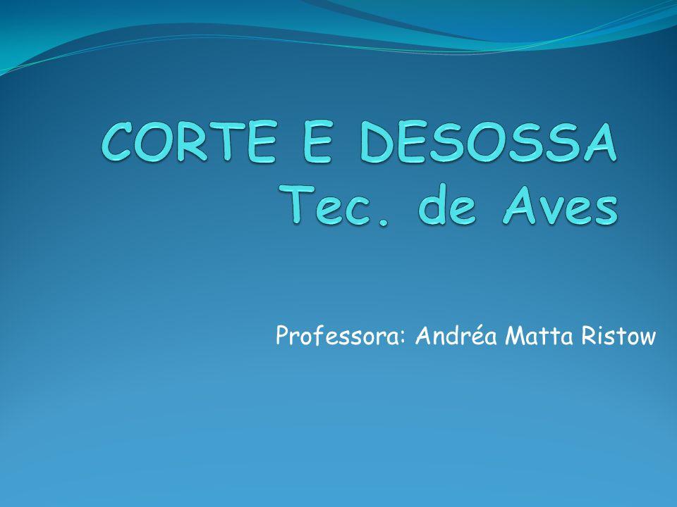 Professora: Andréa Matta Ristow