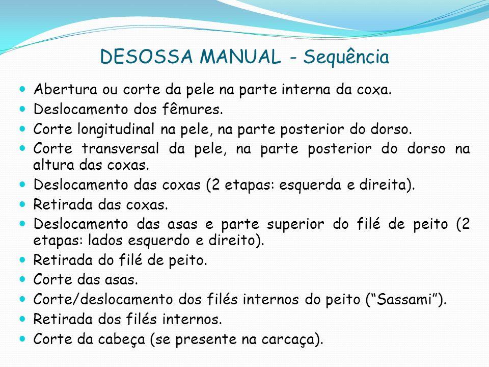DESOSSA MANUAL - Sequência Abertura ou corte da pele na parte interna da coxa.