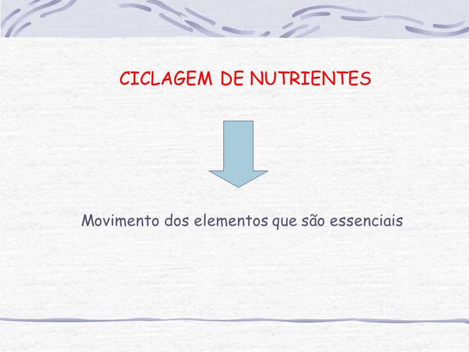 Movimento dos elementos que são essenciais CICLAGEM DE NUTRIENTES