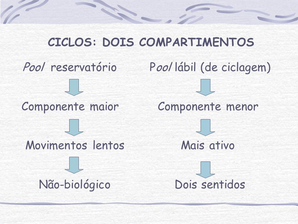 CICLOS: DOIS COMPARTIMENTOS Pool reservatório Pool lábil (de ciclagem) Componente maior Componente menor Movimentos lentos Mais ativo Não-biológico Dois sentidos