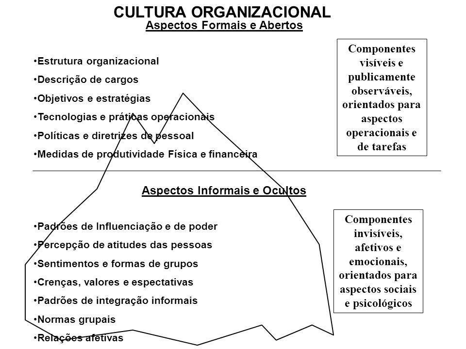 CULTURA ORGANIZACIONAL Aspectos Formais e Abertos Estrutura organizacional Descrição de cargos Objetivos e estratégias Tecnologias e práticas operacio