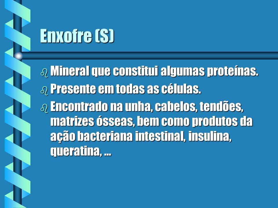 Enxofre (S) b Mineral que constitui algumas proteínas. b Presente em todas as células. b Encontrado na unha, cabelos, tendões, matrizes ósseas, bem co
