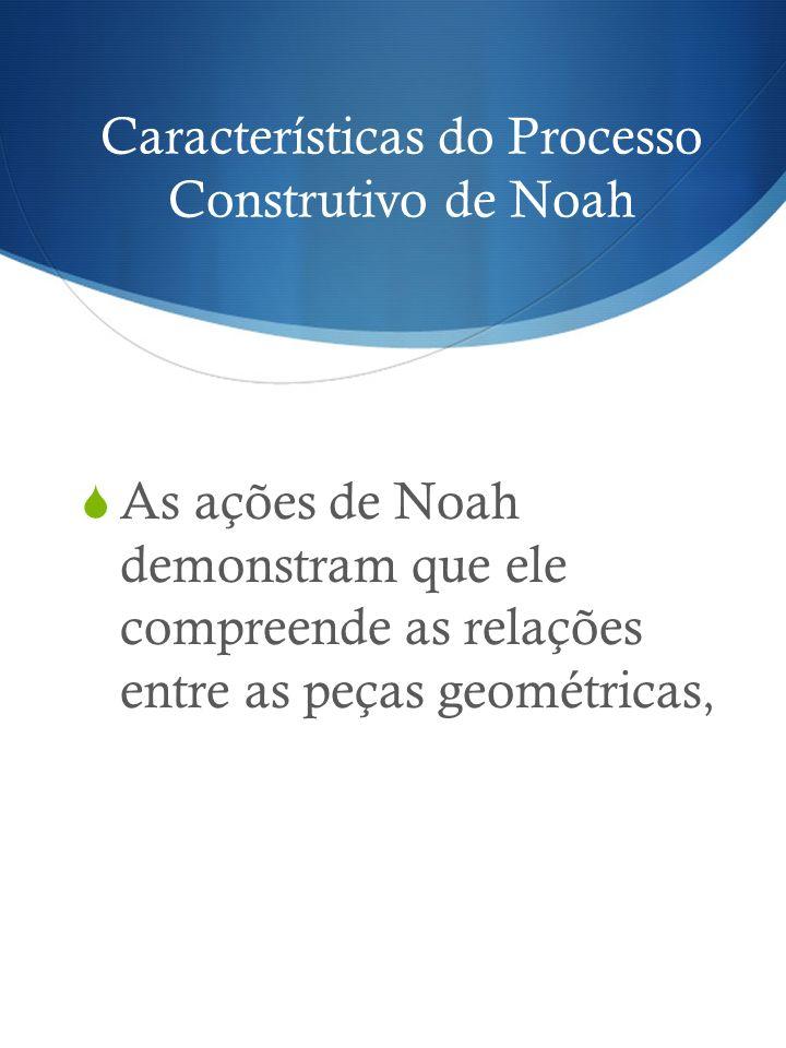 Características do Processo Construtivo de Noah As ações de Noah demonstram que ele compreende as relações entre as peças geométricas,