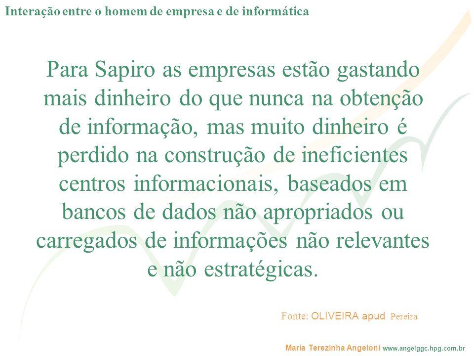 Maria Terezinha Angeloni www.angelggc.hpg.com.br Para Sapiro as empresas estão gastando mais dinheiro do que nunca na obtenção de informação, mas muit