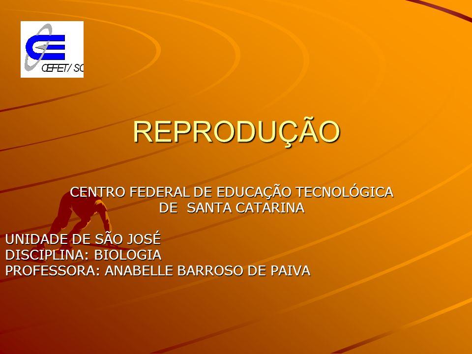 REPRODUÇÃO CENTRO FEDERAL DE EDUCAÇÃO TECNOLÓGICA DE SANTA CATARINA UNIDADE DE SÃO JOSÉ DISCIPLINA: BIOLOGIA PROFESSORA: ANABELLE BARROSO DE PAIVA