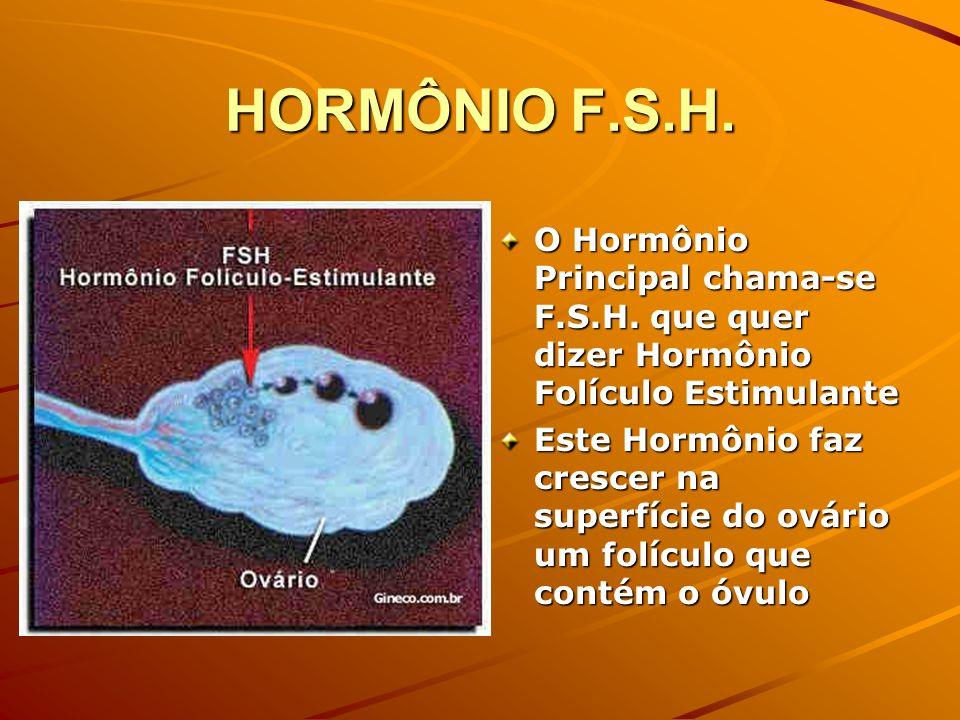 HORMÔNIO F.S.H. O Hormônio Principal chama-se F.S.H. que quer dizer Hormônio Folículo Estimulante Este Hormônio faz crescer na superfície do ovário um