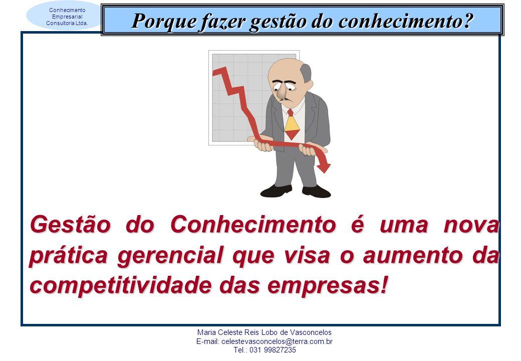 Conhecimento Empresarial Consultoria Ltda.