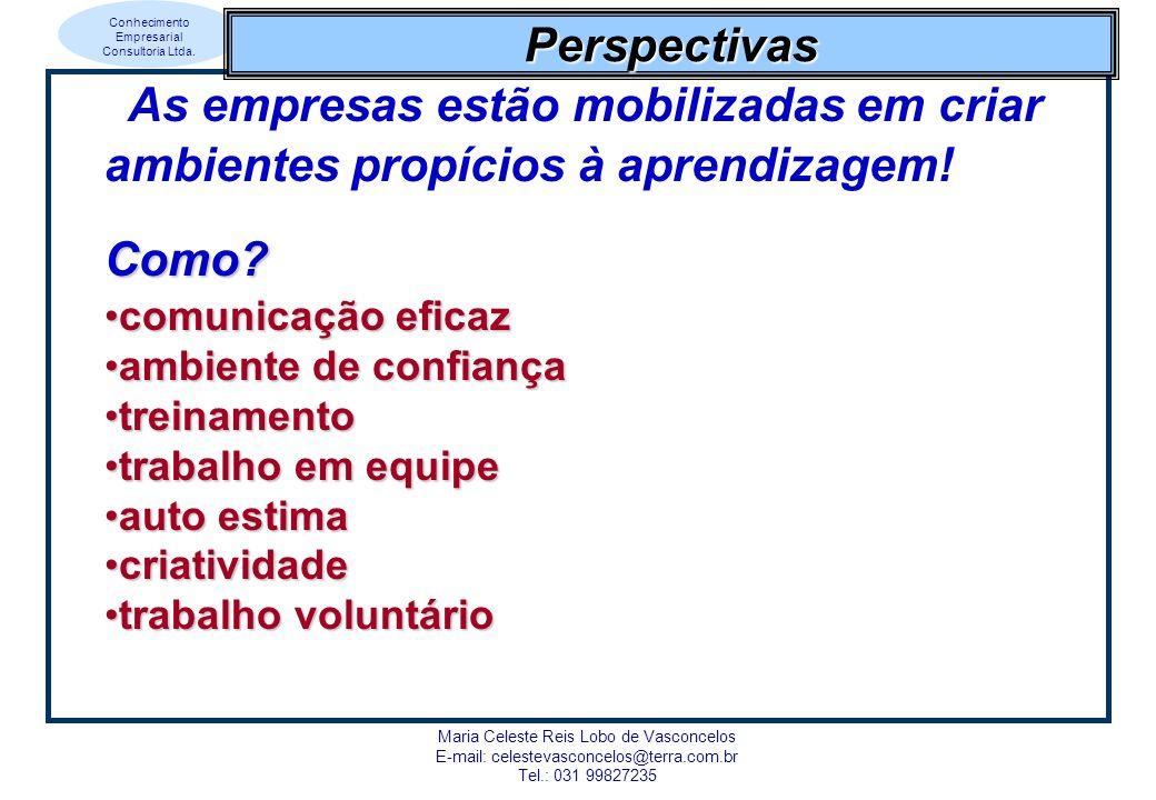 Conhecimento Empresarial Consultoria Ltda. Maria Celeste Reis Lobo de Vasconcelos E-mail: celestevasconcelos@terra.com.br Tel.: 031 99827235 Perspecti