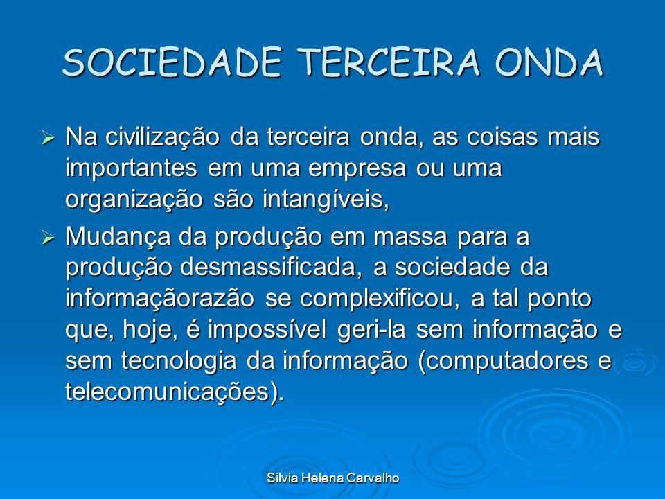 Silvia Helena Carvalho SOCIEDADE TERCEIRA ONDA Na civilização da terceira onda, as coisas mais importantes em uma empresa ou uma organização são intan