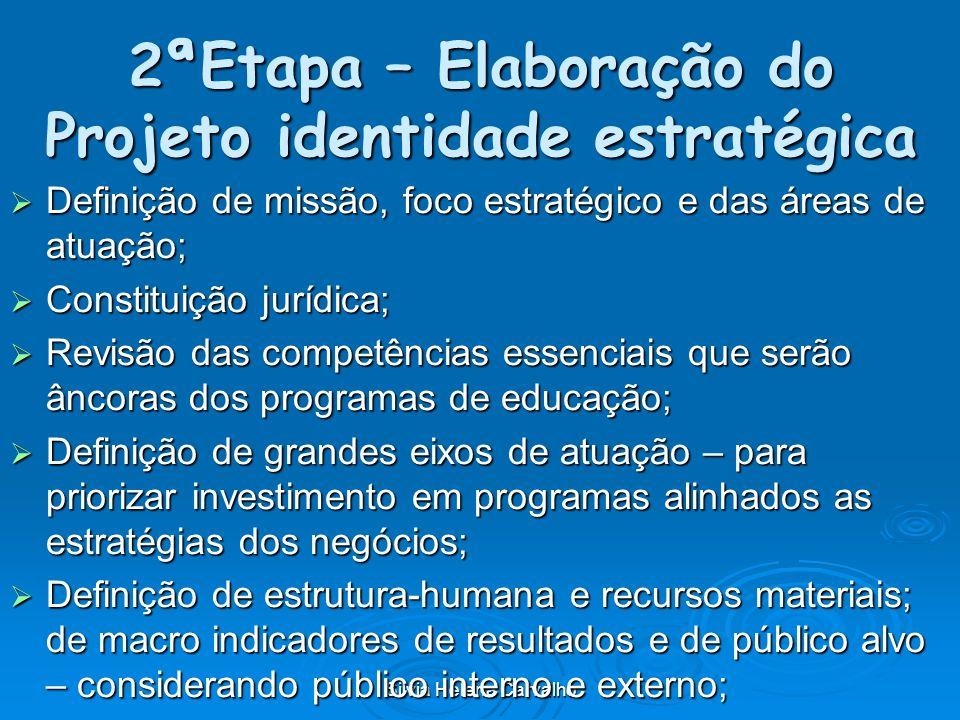 Silvia Helena Carvalho 2ªEtapa – Elaboração do Projeto identidade estratégica Definição de missão, foco estratégico e das áreas de atuação; Definição