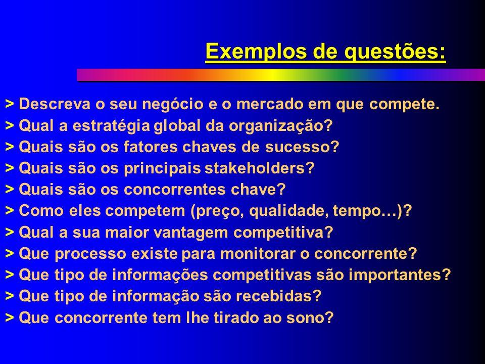 Quais questões devem ser formuladas? > Vendas; > Marketing; > Novos processos, produtos e serviços; > Pesquisa & Desenvolvimento; > Estratégias e plan