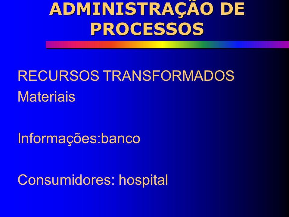 ADMINISTRAÇÃO DE PROCESSOS Operação Recursos de Input Processo de transformação OutputsPolíciaPoliciais Sistema de computador Informações Público(cida