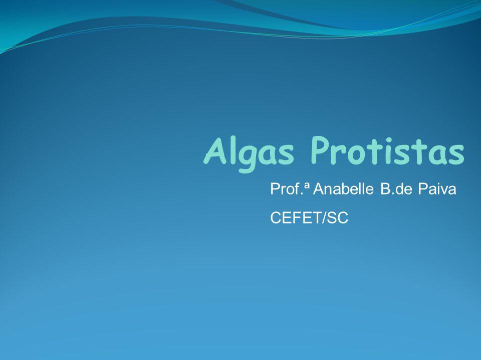 Algas Protistas Prof.ª Anabelle B.de Paiva CEFET/SC