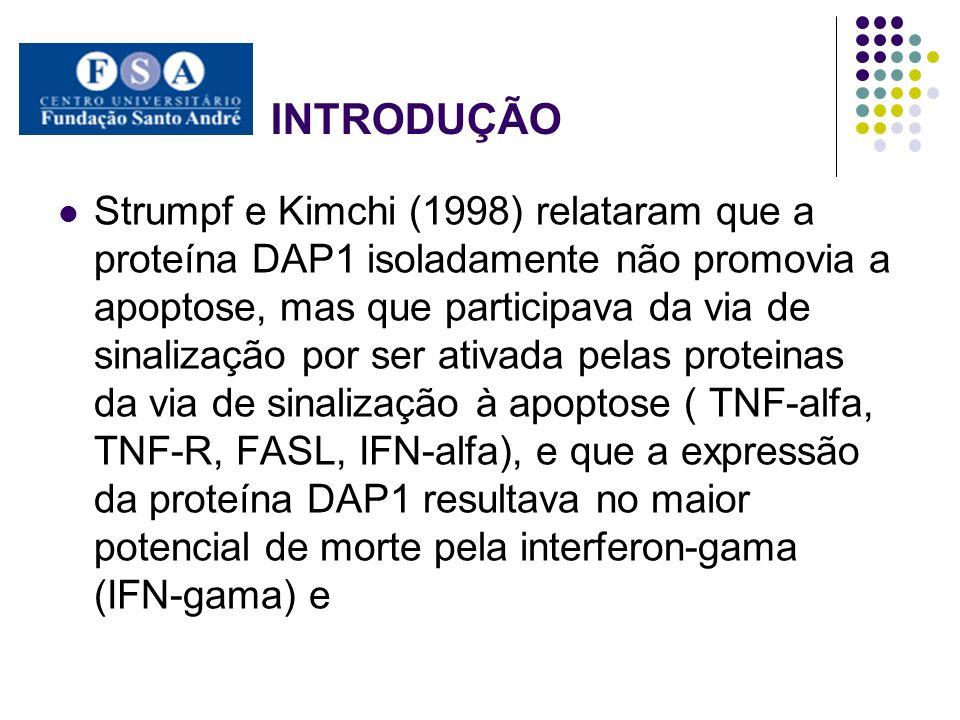 INTRODUÇÃO Strumpf e Kimchi (1998) relataram que a proteína DAP1 isoladamente não promovia a apoptose, mas que participava da via de sinalização por s