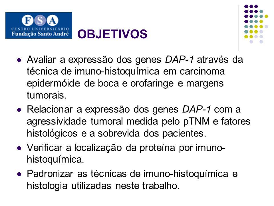 OBJETIVOS Avaliar a expressão dos genes DAP-1 através da técnica de imuno-histoquímica em carcinoma epidermóide de boca e orofaringe e margens tumorai