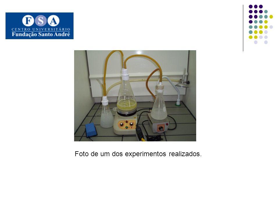 Foto de um dos experimentos realizados.