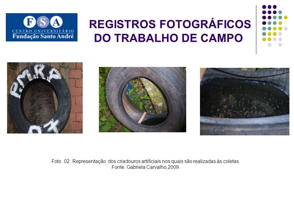 REGISTROS FOTOGRÁFICOS DO TRABALHO DE CAMPO Foto 02: Representação dos criadouros artificiais nos quais são realizadas às coletas. Fonte: Gabriela Car