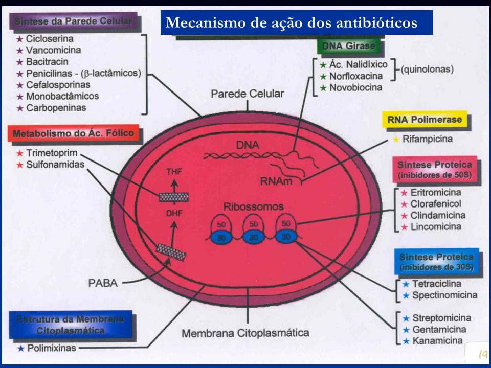 Mecanismo de ação dos antibióticos