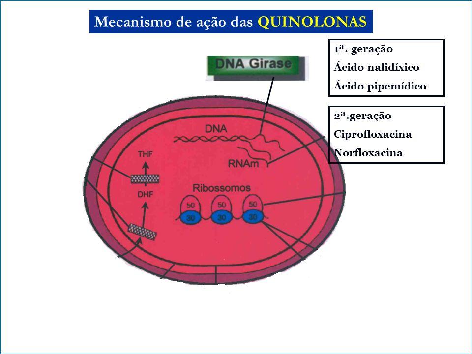 Mecanismo de ação das QUINOLONAS 1ª. geração Ácido nalidíxico Ácido pipemídico 2ª.geração Ciprofloxacina Norfloxacina