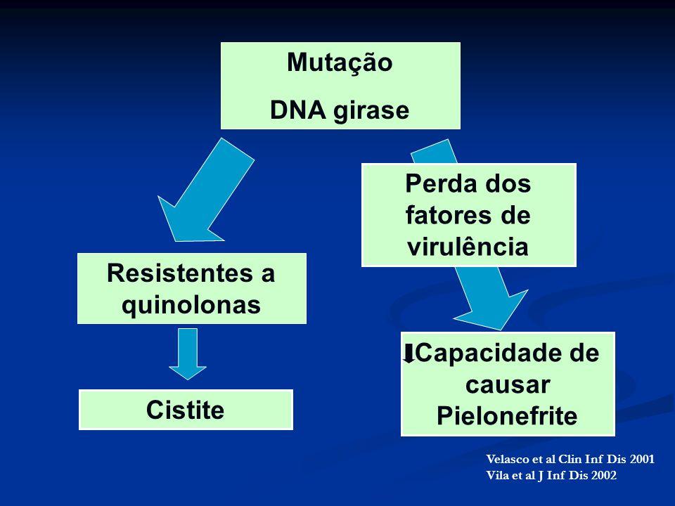 Mutação DNA girase Resistentes a quinolonas Capacidade de causar Pielonefrite Perda dos fatores de virulência Cistite Velasco et al Clin Inf Dis 2001