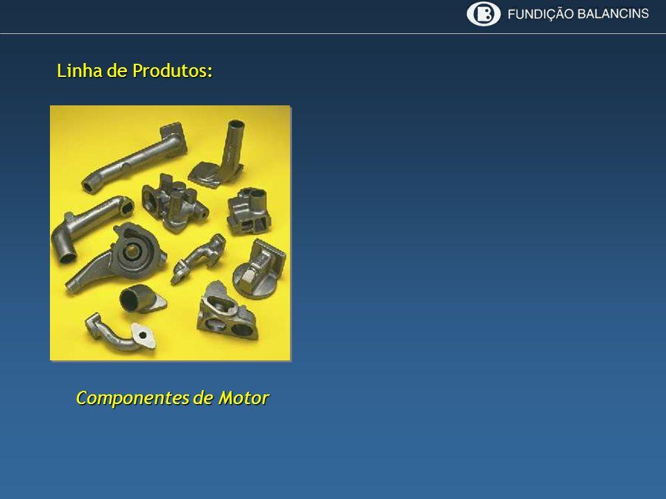 Componentes de Motor Linha de Produtos: