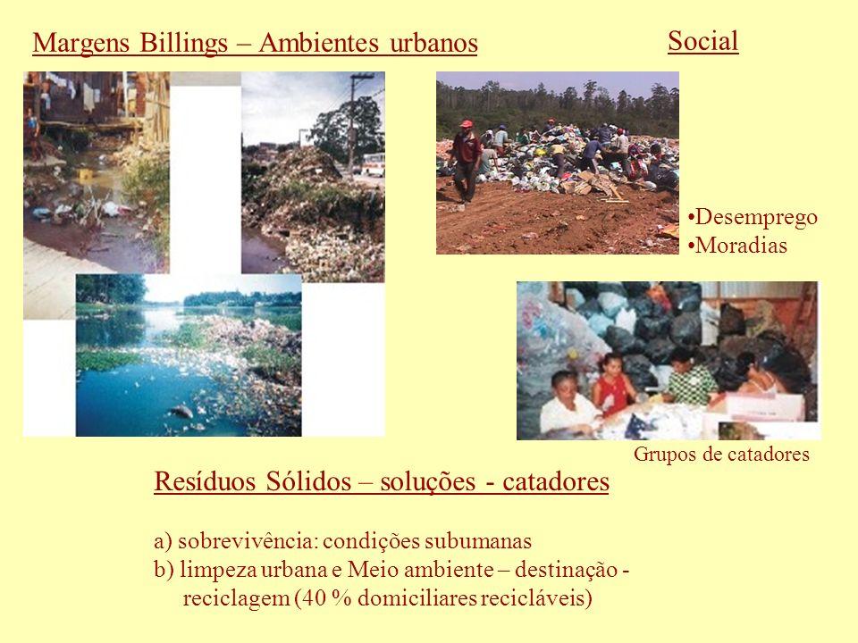 Margens Billings – Ambientes urbanos Desemprego Moradias Social Resíduos Sólidos – soluções - catadores a) sobrevivência: condições subumanas b) limpe