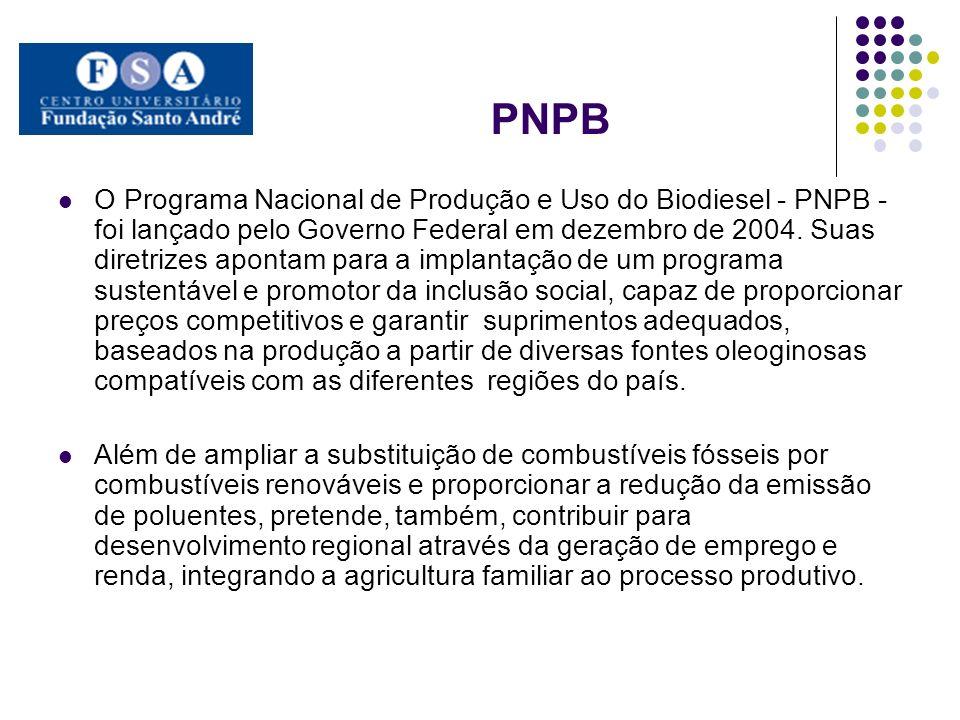 PNPB O Programa Nacional de Produção e Uso do Biodiesel - PNPB - foi lançado pelo Governo Federal em dezembro de 2004. Suas diretrizes apontam para a