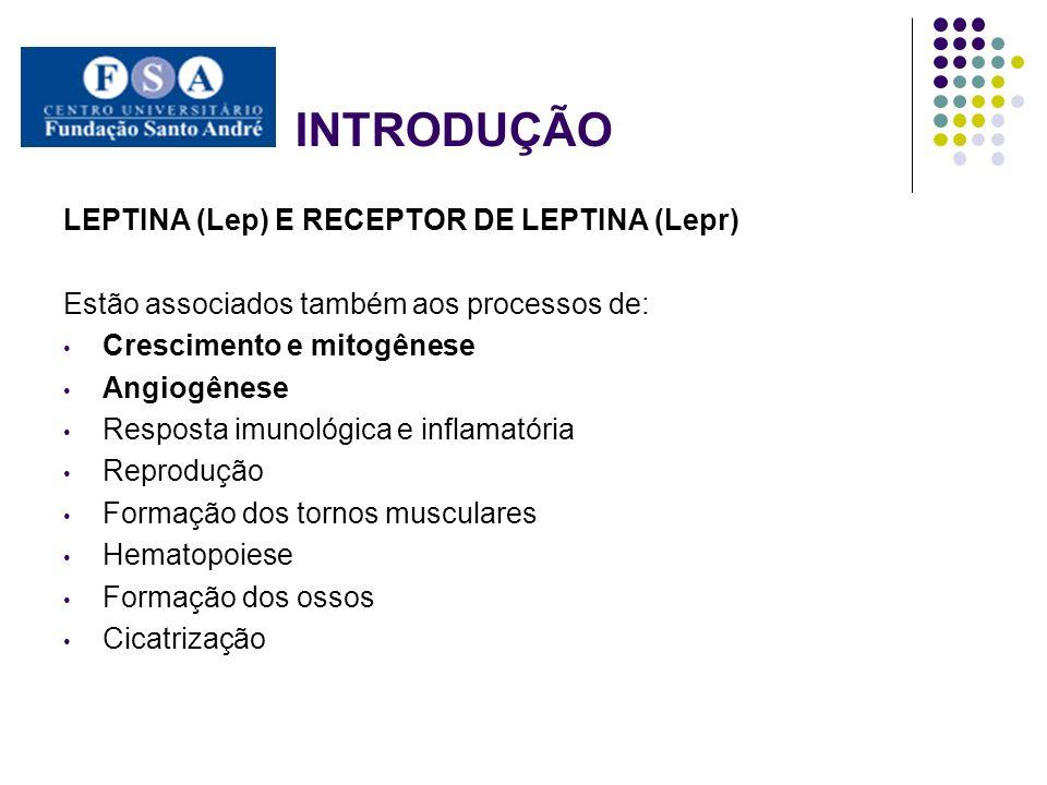 INTRODUÇÃO LEPTINA (Lep) E RECEPTOR DE LEPTINA (Lepr) Estão associados também aos processos de: Crescimento e mitogênese Angiogênese Resposta imunológ