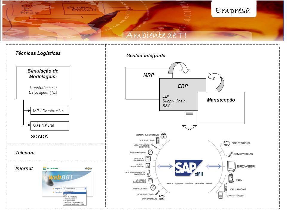 Empresa Ambiente de TI MRP ERP EDI Supply Chain BSC Manutenção Simulação de Modelagem: Transferência e Estocagem (TE) Técnicas Logísticas MP / Combust