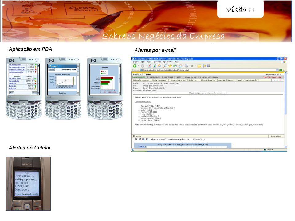 Aplicação em PDA Alertas no Celular Alertas por e-mail Visão TI Sobre os Negócios da Empresa