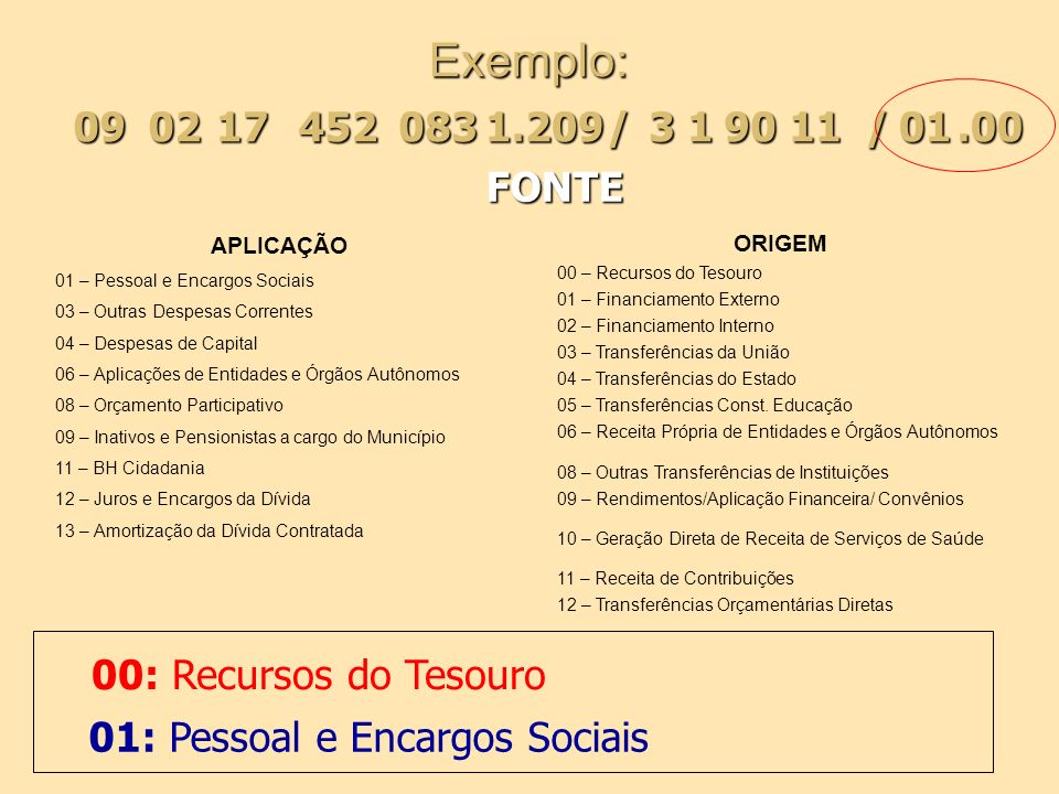 Exemplo: APLICAÇÃO 01 – Pessoal e Encargos Sociais 03 – Outras Despesas Correntes 04 – Despesas de Capital 06 – Aplicações de Entidades e Órgãos Autôn