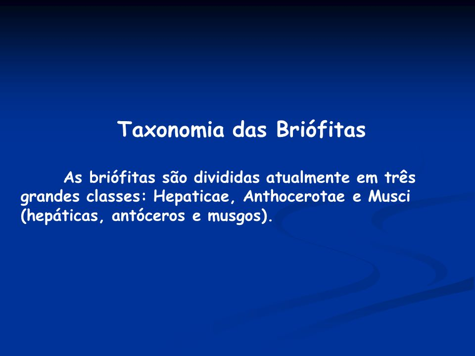 Taxonomia das Briófitas As briófitas são divididas atualmente em três grandes classes: Hepaticae, Anthocerotae e Musci (hepáticas, antóceros e musgos)