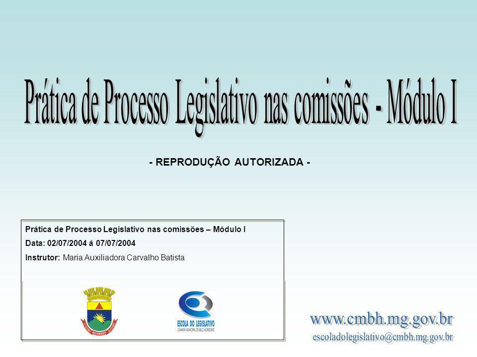 Prática de Processo Legislativo nas comissões – Módulo I Data: 02/07/2004 á 07/07/2004 Instrutor: Maria Auxiliadora Carvalho Batista - REPRODUÇÃO AUTO