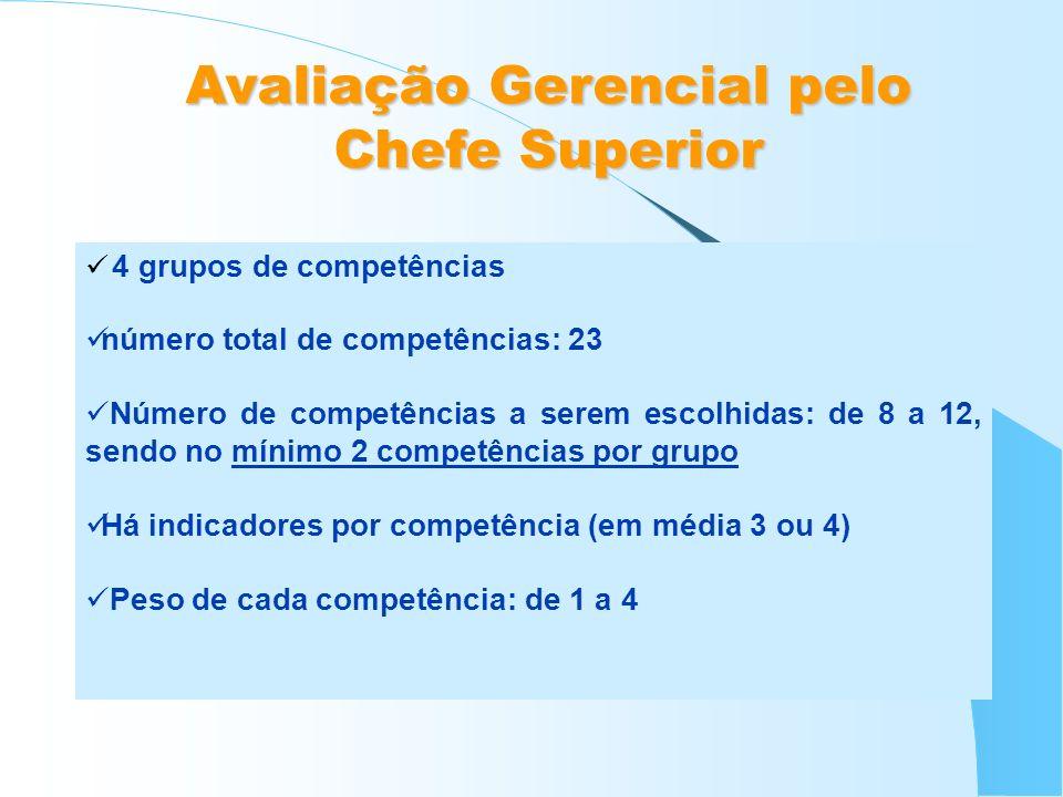 4 grupos de competências número total de competências: 23 Número de competências a serem escolhidas: de 8 a 12, sendo no mínimo 2 competências por gru