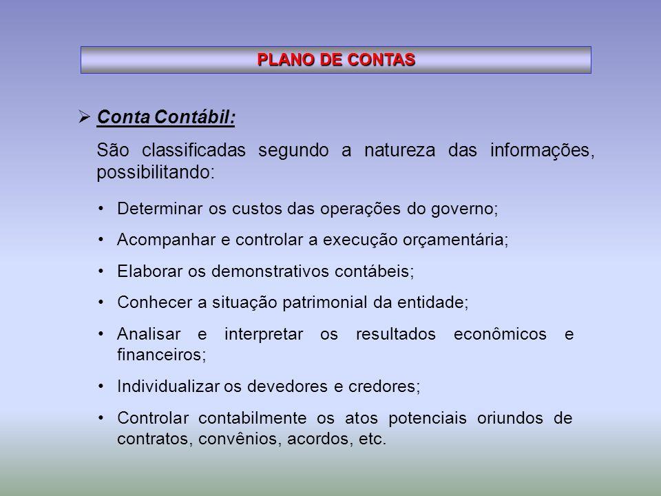 Conta Contábil: São classificadas segundo a natureza das informações, possibilitando: PLANO DE CONTAS Determinar os custos das operações do governo; A