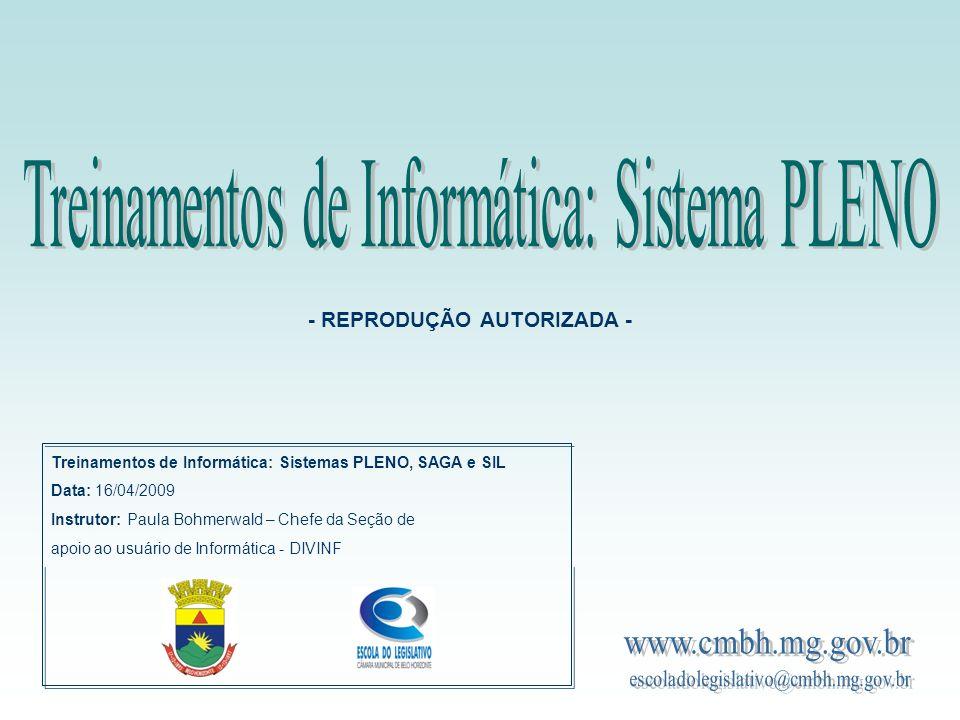 Treinamentos de Informática: Sistemas PLENO, SAGA e SIL Data: 16/04/2009 Instrutor: Paula Bohmerwald – Chefe da Seção de apoio ao usuário de Informáti