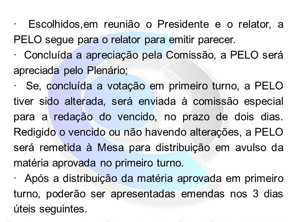 · Escolhidos,em reunião o Presidente e o relator, a PELO segue para o relator para emitir parecer.