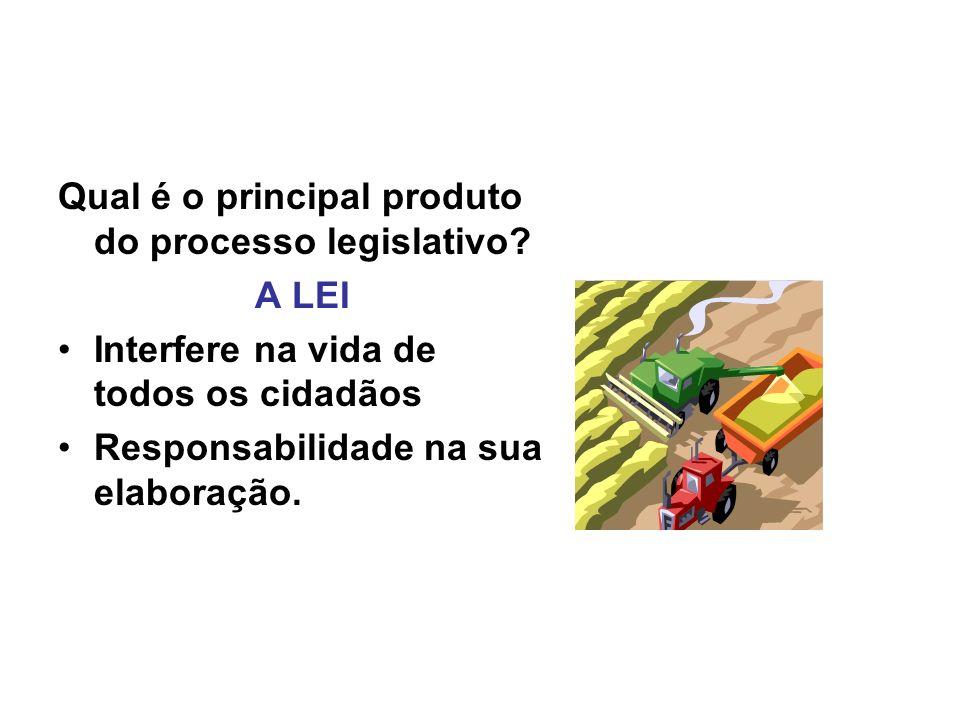 Qual é o principal produto do processo legislativo.