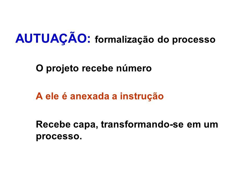AUTUAÇÃO: formalização do processo O projeto recebe número A ele é anexada a instrução Recebe capa, transformando-se em um processo.