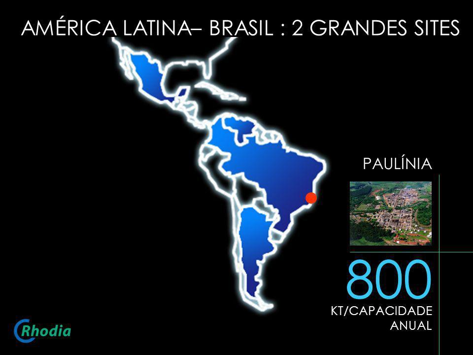 AMÉRICA LATINA– BRASIL : 2 GRANDES SITES PAULÍNIA 800 KT/CAPACIDADE ANUAL