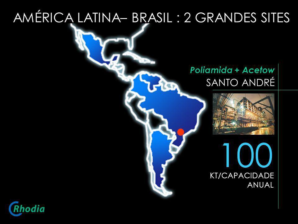 SANTO ANDRÉ 100 KT/CAPACIDADE ANUAL Poliamida + Acetow AMÉRICA LATINA– BRASIL : 2 GRANDES SITES