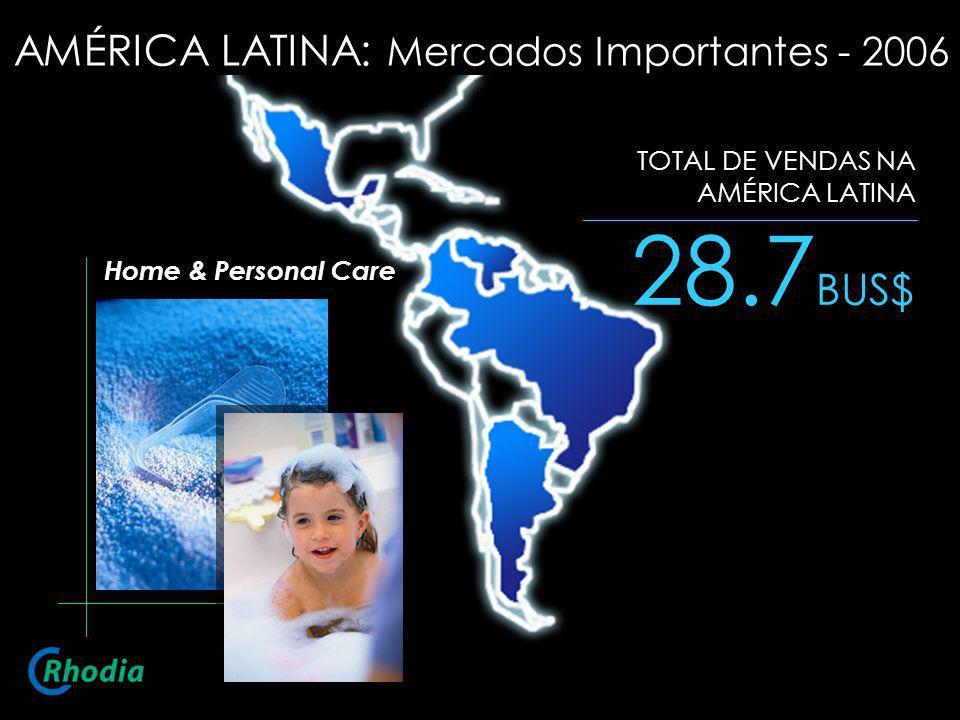 28.7 BUS$ TOTAL DE VENDAS NA AMÉRICA LATINA Home & Personal Care AMÉRICA LATINA: Mercados Importantes - 2006
