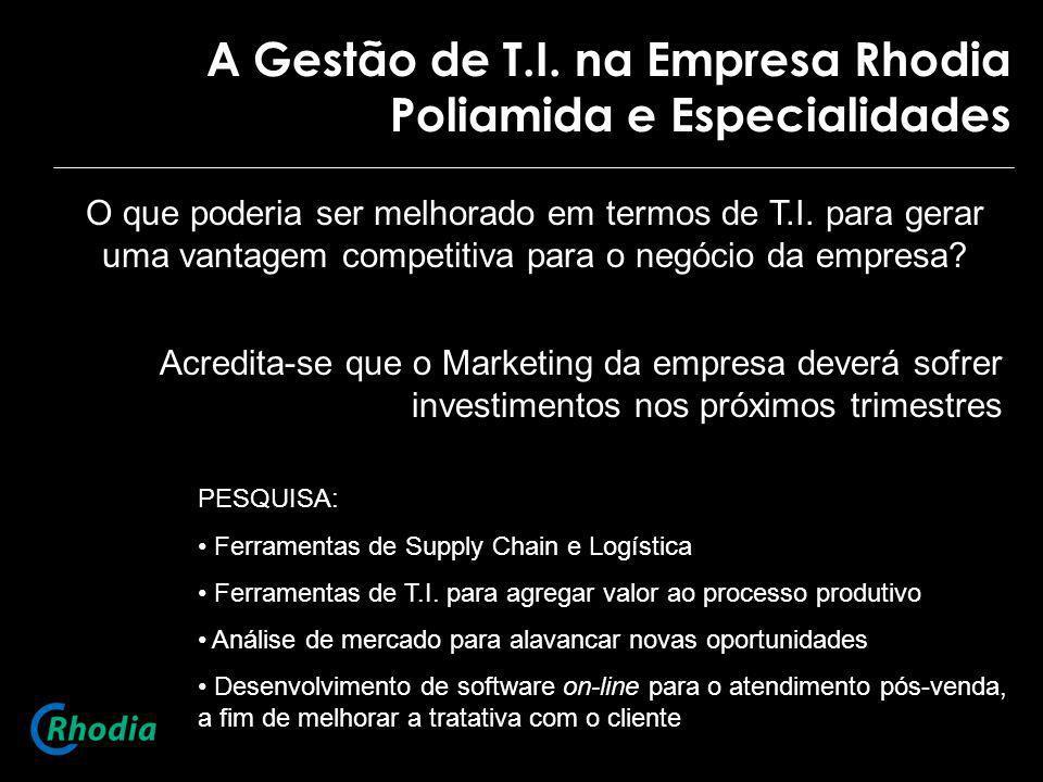 A Gestão de T.I. na Empresa Rhodia Poliamida e Especialidades O que poderia ser melhorado em termos de T.I. para gerar uma vantagem competitiva para o