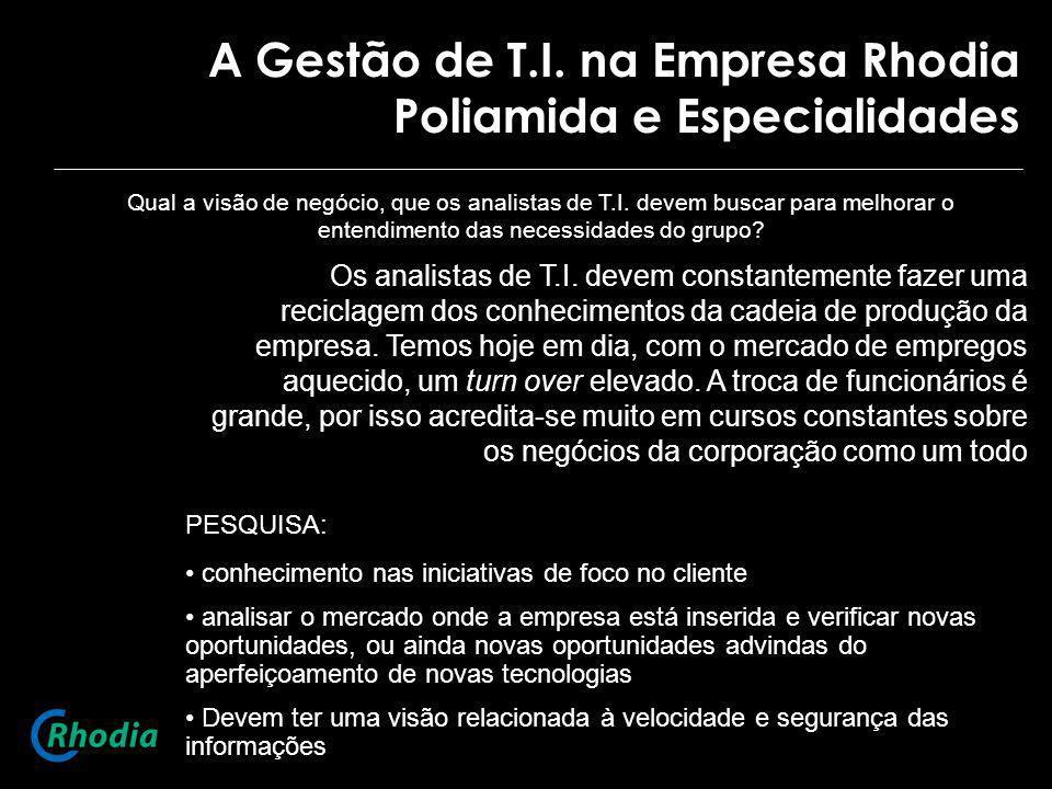A Gestão de T.I. na Empresa Rhodia Poliamida e Especialidades Qual a visão de negócio, que os analistas de T.I. devem buscar para melhorar o entendime