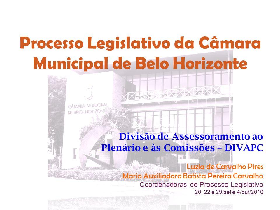 Processo Legislativo da Câmara Municipal de Belo Horizonte Divisão de Assessoramento ao Plenário e às Comissões – DIVAPC Luzia de Carvalho Pires Maria