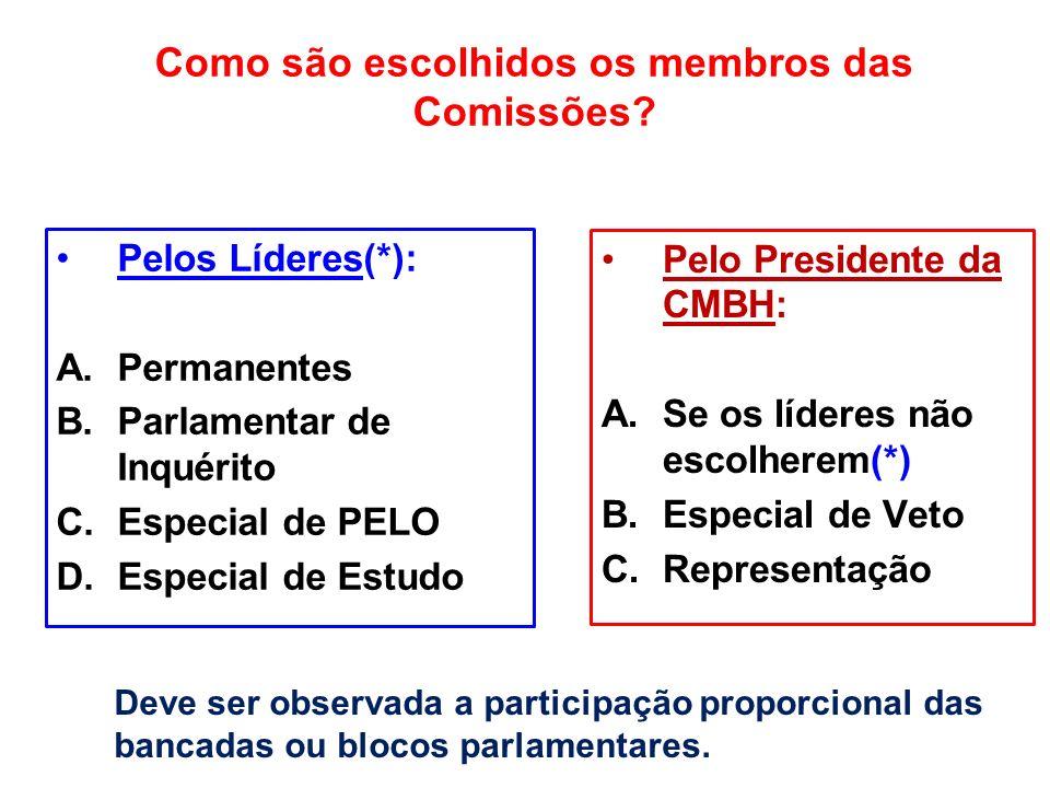 Como são escolhidos os membros das Comissões? Pelos Líderes(*): A.Permanentes B.Parlamentar de Inquérito C.Especial de PELO D.Especial de Estudo Pelo
