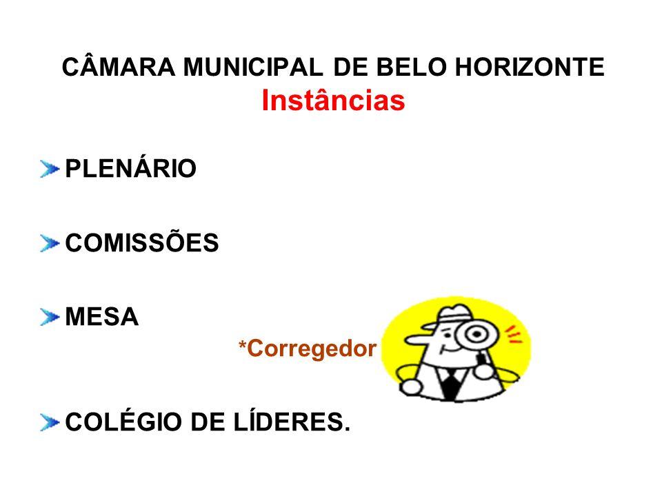 CÂMARA MUNICIPAL DE BELO HORIZONTE Instâncias PLENÁRIO COMISSÕES MESA * Corregedor COLÉGIO DE LÍDERES.